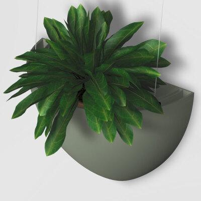 ARTITEQ Botaniq Plant Pot